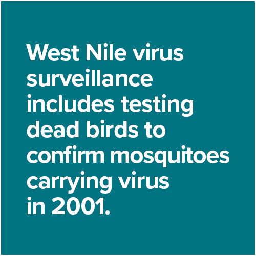 West Nile virus surveillance includes testing dead birds to confirm mosquitoes carrying virus  in 2001.